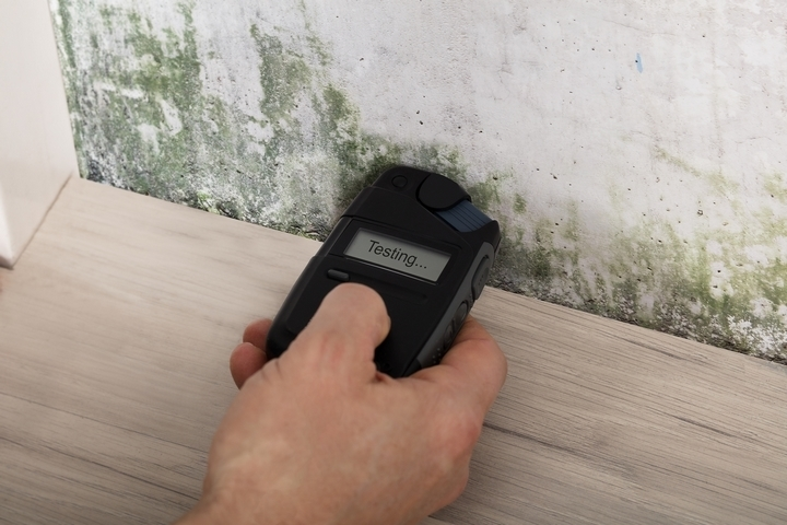Mold is one of the common causes of poor indoor air quality.